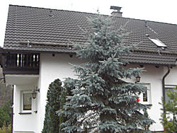 Familie Moser in Limbach-Oberfrohna